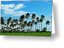 Fiji Greeting Card