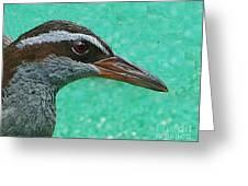 Fijinan Bird 2 Greeting Card