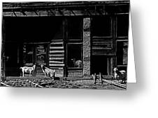 Film Homage King Vidor Billy The Kid 1930 Wild Goats Ghost Town Billy The Kid Haunt White Oaks Nm 19 Greeting Card