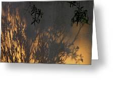 Film Noir Edward G. Robinson Richard Conte House Of Strangers 1949 Casa Grande Arizona 2004 Greeting Card