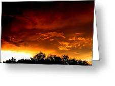 Film Noir Errol Morris The Dark Wind 1991 Casa Grande Arizona 2004 Greeting Card