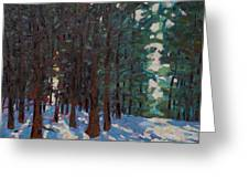 Filtered Light Greeting Card