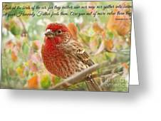 Finch With Verse New Version Greeting Card