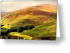 Find The Soul. Golden Hills Of Wicklow. Ireland Greeting Card by Jenny Rainbow
