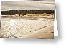 Findhorn Beach Greeting Card