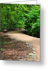 Finding The Way - Yates Mill Greeting Card