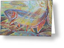 Fine Spotted Cutthroat Trout Greeting Card by Jenn Cunningham