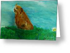 Finigan Iv Greeting Card by Marie Bulger