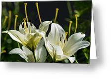 Finishing Blossoming - Featured 3 Greeting Card