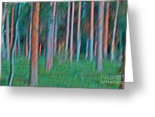 Finland Forest Greeting Card