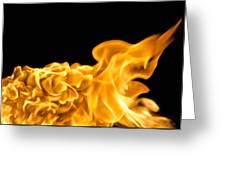 Fire 016 Greeting Card