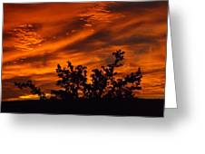 Fire In The Skies Greeting Card by Rebecca Cearley
