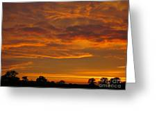 Fire In The Sky Greeting Card by Ann Horn