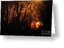 Fire In The Woods Sunset Greeting Card