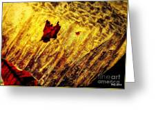 Fire Of The Frost Greeting Card
