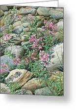 Fire On The Rocks Greeting Card
