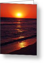 Fire Red Sunset Greeting Card