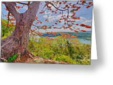 Fire Tree Greeting Card by George Paris