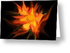 Firelily Greeting Card