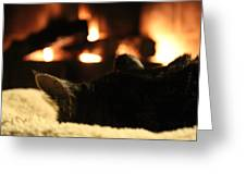 Fireside Cat Nap Greeting Card