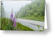 Fireweed And Fog Scenic Highway Greeting Card