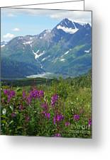 Fireweed Greeting Card by Jennifer Kimberly
