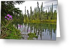 Fireweed On The Clearwater Greeting Card