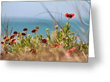 Firewheels By The Sea Greeting Card