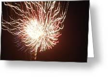 Firework Burst Greeting Card by April Lerro