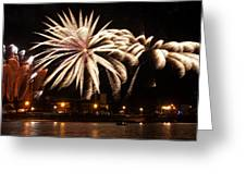 Firework Explosions Greeting Card