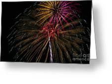 Fireworks 070414.213 Greeting Card