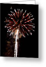 Fireworks 14 Greeting Card by Mark Malitz