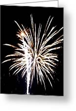 Fireworks 2 Greeting Card by Mark Malitz
