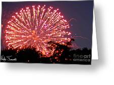 Fireworks 2014  1 Greeting Card