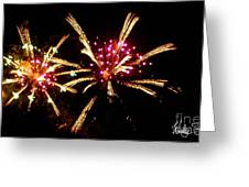 Fireworks 2014  12 Greeting Card