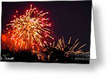 Fireworks 2014  4 Greeting Card