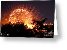 Fireworks 2014  5 Greeting Card