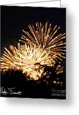 Fireworks 2014  8 Greeting Card