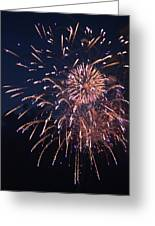 Fireworks 2014 Ix Greeting Card
