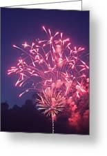 Fireworks 2014 X Greeting Card
