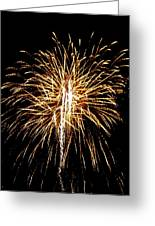 Fireworks 3 Greeting Card by Mark Malitz
