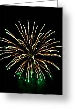 Fireworks 5 Greeting Card by Mark Malitz