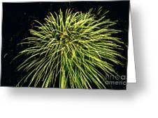 Fireworks At Night 8 Greeting Card