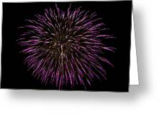 Fireworks Bursts Colors And Shapes 5 Greeting Card