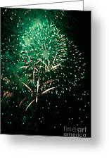 10223 Alstervergnuegen Fireworks 2013 Greeting Card