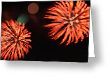 Fireworks Greeting Card by Kelly Howe