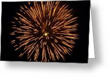 Fireworks Shell Burst Greeting Card by Jay Droggitis