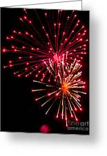 Fireworks1 Greeting Card