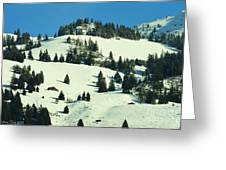 Firs Decoration Winterscape Greeting Card