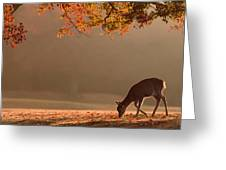 First Autumn Greeting Card